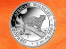 1 Unze Somalia Leopard African Wildlife Silbermünze...