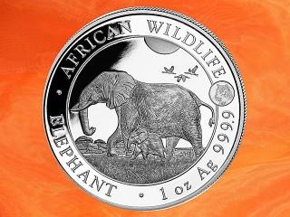 1 Unze Somalia Elefant Privy TIGER African Wildlife Silbermünze 2022 (Auflage 5.000)