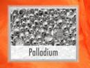 1 Gramm Palladium Geschenkbarren Flipmotiv: Nugget
